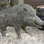 The Ringwood hog!