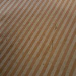 stained carpeting (not wet)