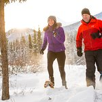Strap on some snowshoes to enjoy the magical winter landscape