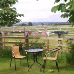 The Ginger Cow Company outdoor tea room!