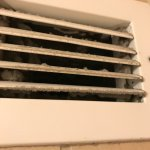 Air vent. I don't think this has been cleaned. Ever.
