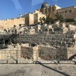 Exploring Israel Foto
