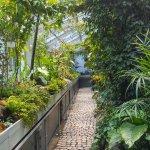 Photo of Jevremovac Botanical Garden