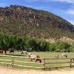 Slot canyons inn pasture