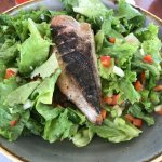 Catch of the day grilled over fresh salad