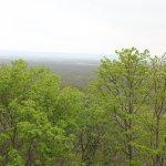木道からの景色