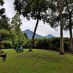 View of Virunga range from the garden, with the friendly resident dog Sushi running around.