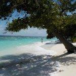 Foto de Bandos Maldives