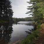 Photo of Beaver Pond Trail