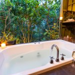 Treetop Bathhouse with rainforest view