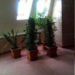 Photo of Art Hotel Voronezh