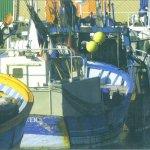 Port de Pêche de Chef de Baie
