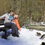 Am Badersee im Winter