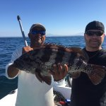 Grouper, excellent eating. Client out on a charter with us