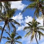 Photo de Karafuu Beach Resort and Spa