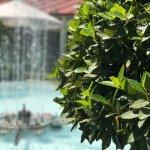 El gazpacho buenísimo los jardines muy bonitos