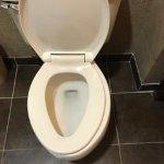 Unhinged toilet seat