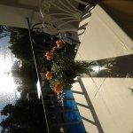 Photo of Grand Hotel Ischia Lido