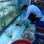 Photo of Viet Ha Seafood