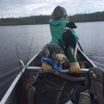 Tuscarora Lodge and Canoe Outfitters Photo