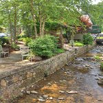 Creek & Courtyard