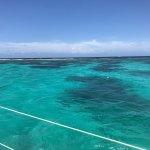 Tropical Catamaran Sailing Day Tours