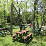 Centrally located playground and barbecue area.