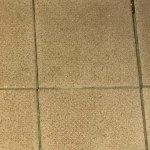 Bathroom floor tiles filthy.