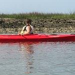 Ecology salt marsh tour