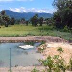 natural water swimming pool