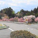 Hieizan Driveway Resmi