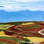 Foto de Dongchuan Red Land
