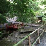Photo of Manyo Park