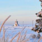 Nallikari in winter