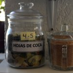 Coca leaves are available