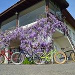 Nos vélos pour de jolies balades au bord du fleuve Adour