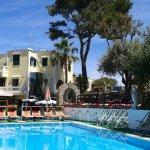 Photo of Hotel Villa Hibiscus