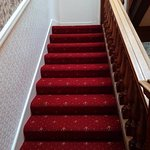 Some new carpeting in a traditional style. Lots of stairs.