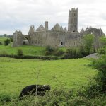 View on Quin Abbey