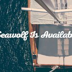 Seawolf is available