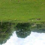 Burrator Reservoir