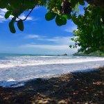 Foto de Kalon Surf - Surf Coaching Resort