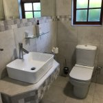 Toilet and Sink, Cottage 2017