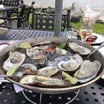 oysters and rose