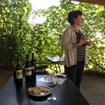 Photo of Casa Sola - Chianti Winery