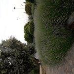 Jardines y vista desde habitación 107
