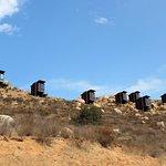 Foto de Tour Ruta del Vino