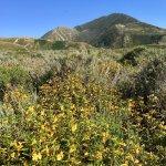 Photo de Montana de Oro State Park