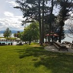Heated pool and picnic grove