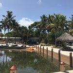 Photo of Kona Kai Resort, Gallery & Botanic Garden